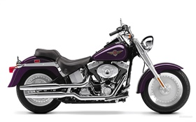 Harley-Davidson мотоцикл, Fatboy HD обои