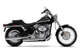 Harley-Davidson мотоцикл, Softail HD обои