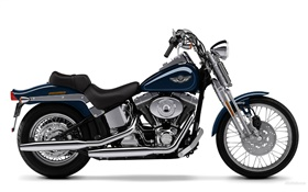 Harley-Davidson мотоцикл, Springer Softail HD обои